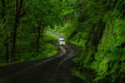 A blue VW Bus drives on a green forest road in the pacific northwest